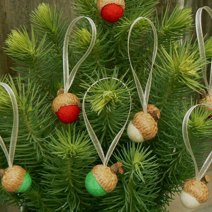 Best 25 Natural Christmas Ornaments Ideas On Pinterest