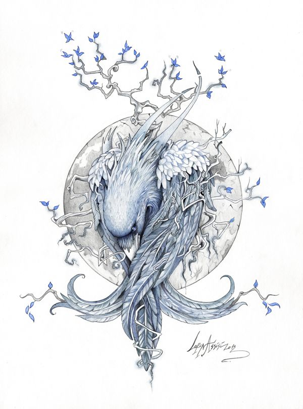 """The Raven"" by Lorena Assisi, via Behance"