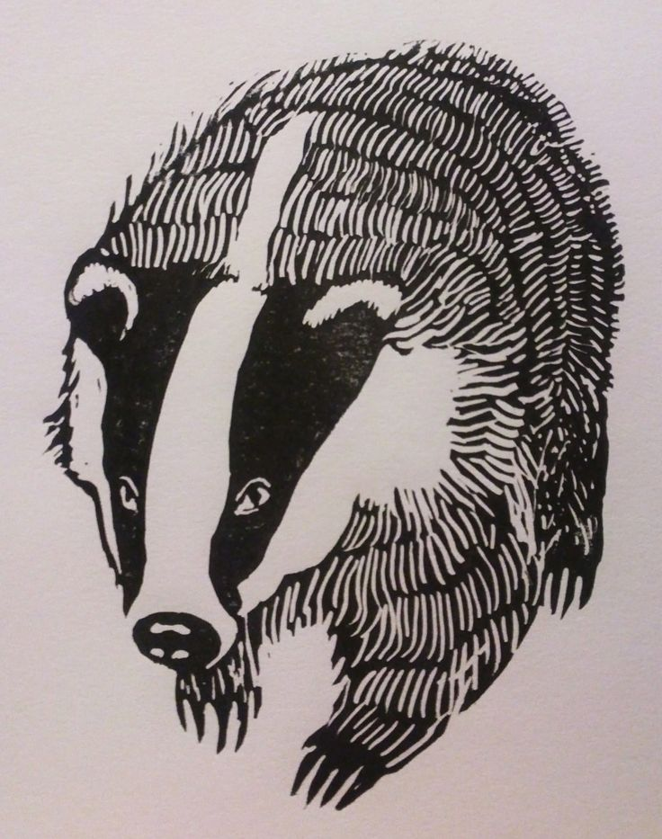 Handmade Printed Badger Lino-Cut 6'' x 6'' Square Card. $1.56, via Etsy.