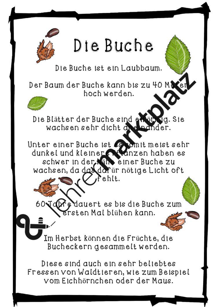 793 besten SU 2. Klasse Bilder auf Pinterest | Grundschulen ...