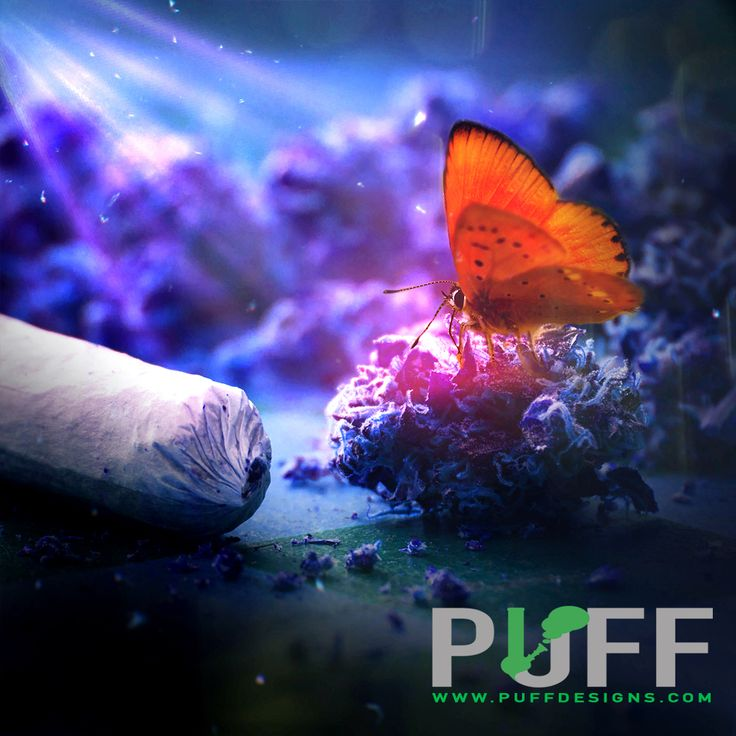 Unique web campaign  #puffdesigns.com #weed #marijuana #trichomes #cookies #420 #haze #kush #igers #hazeporn #thc #hightimes #stoner #indica #sativa #187 #cannabis #lifestyle #motivation #weedporn #amazing #weedgram #awesome #repost