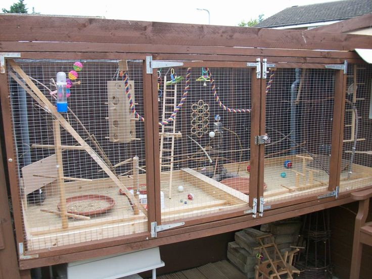 how to make a big cage for lovebirds
