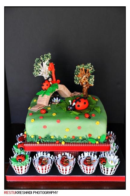 61 best Ladybugcakes images on Pinterest Ladybug cakes Ladybugs
