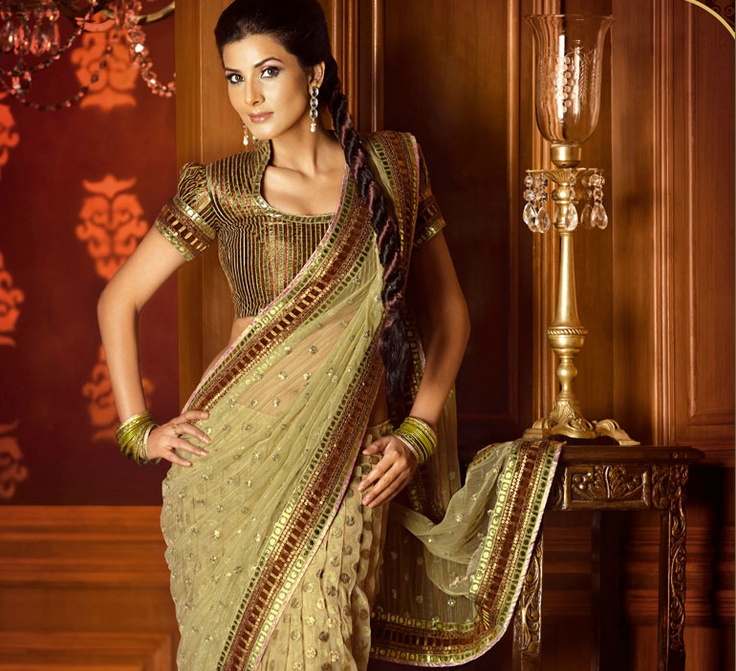 Simple Light green net saree with Brown and golden blouse