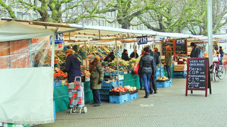 Kramen biologische markt Den Haag naast het binnenhof met bietjes, knolselderij, peen, witlof en paddestoelen