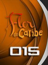 Capitulo 13 | Flor del Caribe | Chilenextvideos