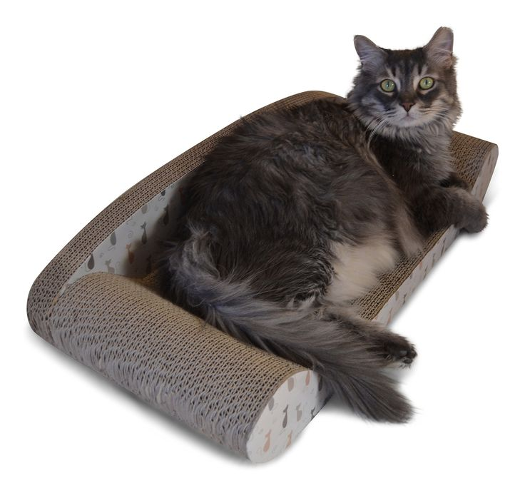 Protect Sofa From Cat