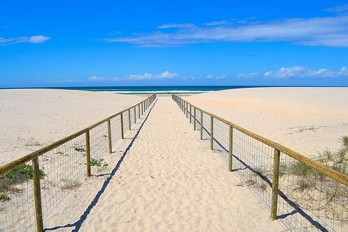 Gold Coast Beach ©