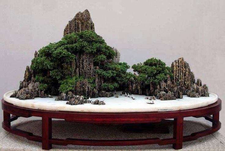 Landscape bonsai chinese penjing found at kuanghua for Decoration jardin chinois