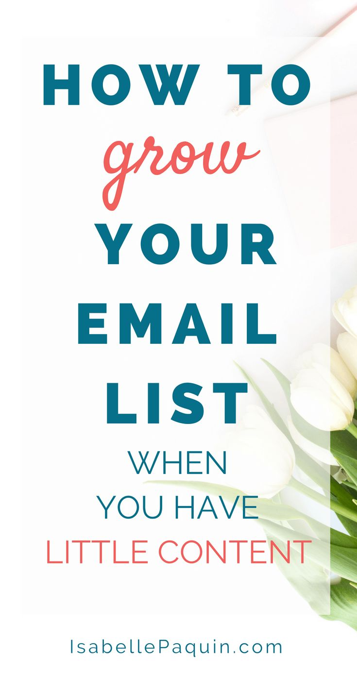Email List: You have a new online business and are having a hard time  building your email list? Find out 5 best tips to grow your email list when  you have a little blog.  Schedule