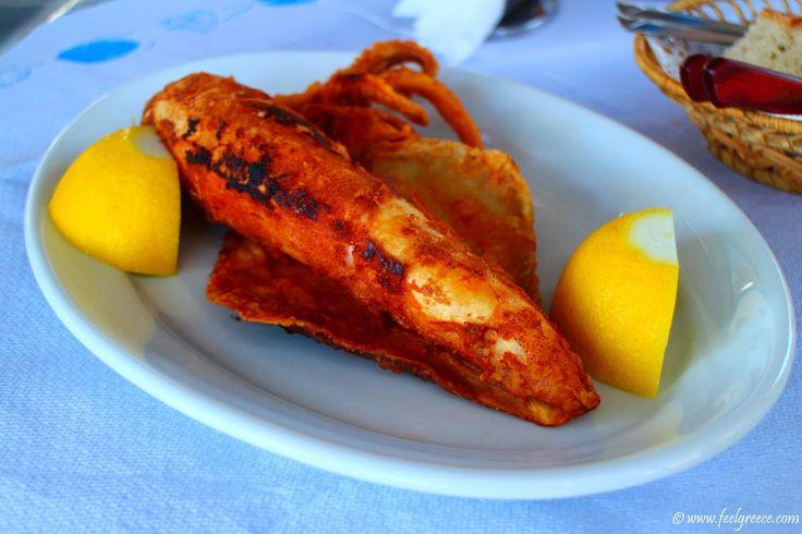 A whole fried squid at Aliki tavern, Kimolos island, Cyclades, Greece