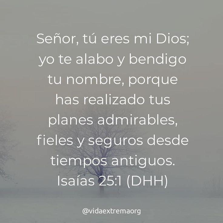 Señor tu eres mi Dios; yo te alabo y bendigo tu nombre porque has realizado tus planes admirables fieles y seguros desde tiempos antiguos. Isaías 25:1. #PalabraDeDios #Adoracion #Bendiciones #VidaExtremaOrg