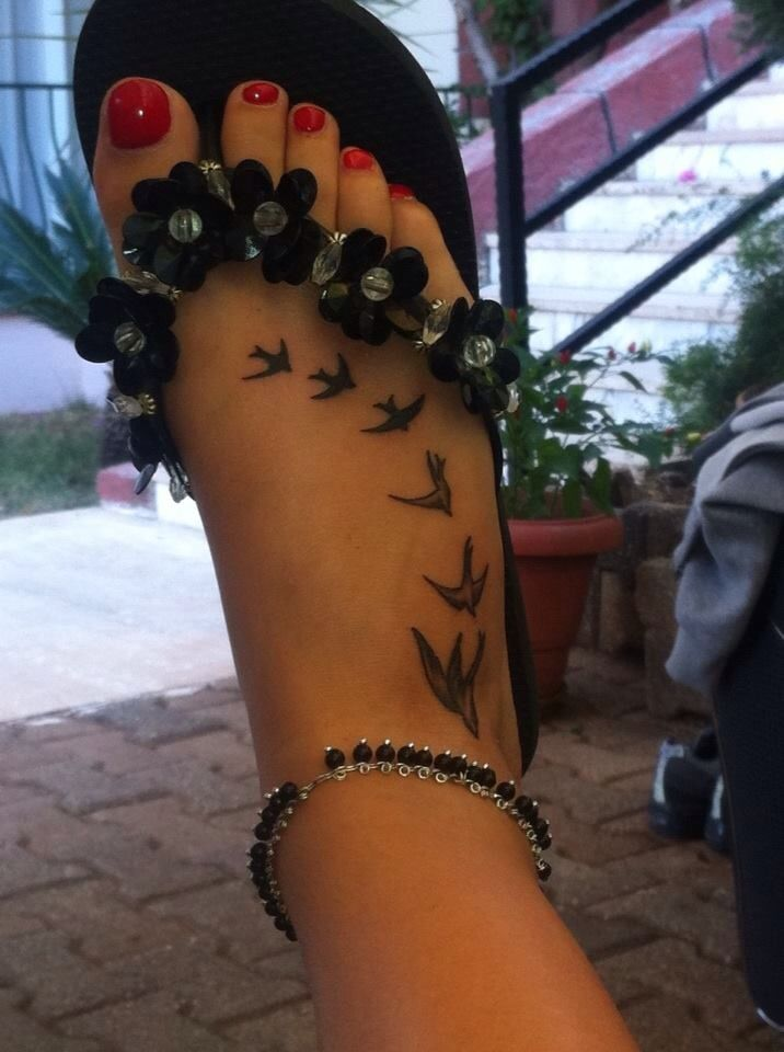 Swallow tattoo on my foot ☺️