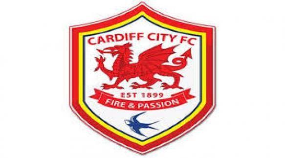 Buy Cardiff City Tickets   Buy Premier League Ticket - Football Ticket Hub