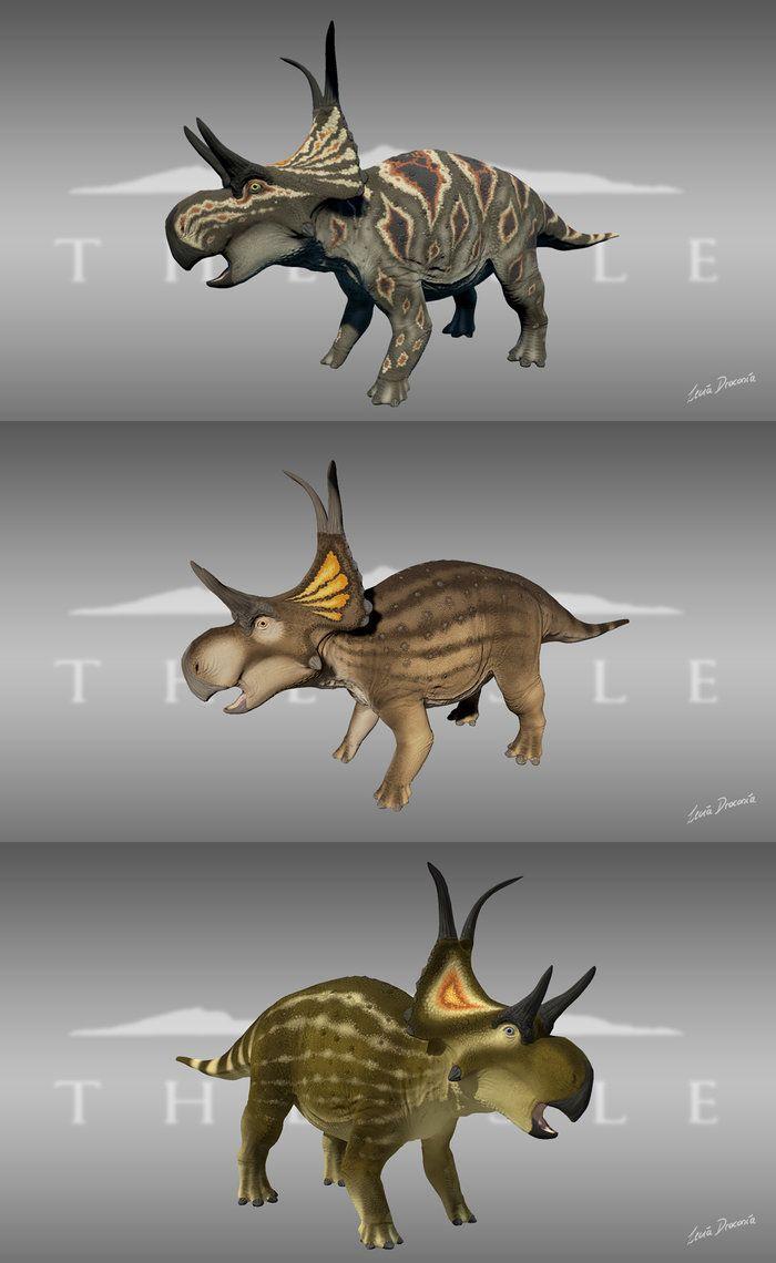 31+ Diabloceratops size ideas