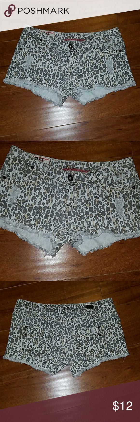 Cheetah shorts 1st kiss cheetah demin shorts 98% cotton 2% spandex . 1st kiss  Shorts Jean Shorts