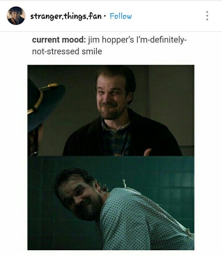 "Current mood: Jim Hopper's ""I'm definitely not stressed"
