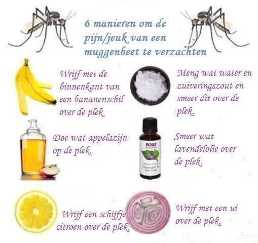 simpele middeltjes tegen pijn/jeuk van muggenbeten.