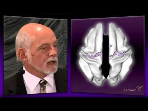 Dr Russell Barkley - ADHD Hyperactivity & Multitasking