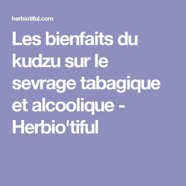 Les bienfaits du kudzu sur le sevrage tabagique et alcoolique - Herbio'tiful