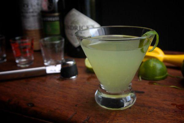 ... Chartreuse, maraschino liqueur, lime juice, lime twist | Shutterbean