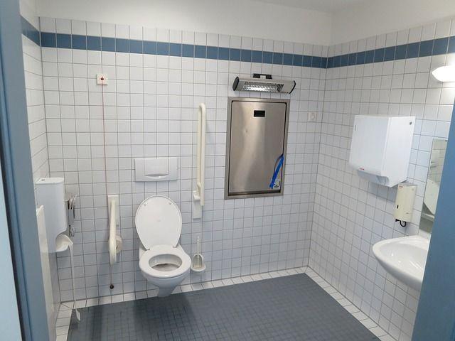 Illustration sur l'accessibilité au bâti, aux toilettes