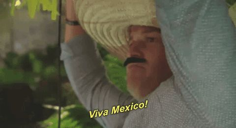 mtv johnny the challenge rivals iii season 28 the challenge rivals iii viva mexico rivals 3 johnny devenanzio johnny bananas  GIF mtv johnny the challenge rivals iii season 28 the challenge rivals iii viva mexico rivals #DIKY #GIF #Trending #Tumblr #Humor