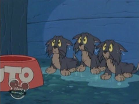 Pluto's Kittens (House of Mouse). A Mickey, Donald & Goofy Cartoon - Disney's House of Mouse  (just for fun!)