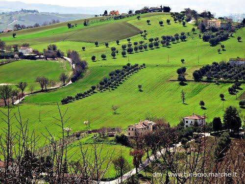Corinaldo (AN): Panorama - Marche, Italy