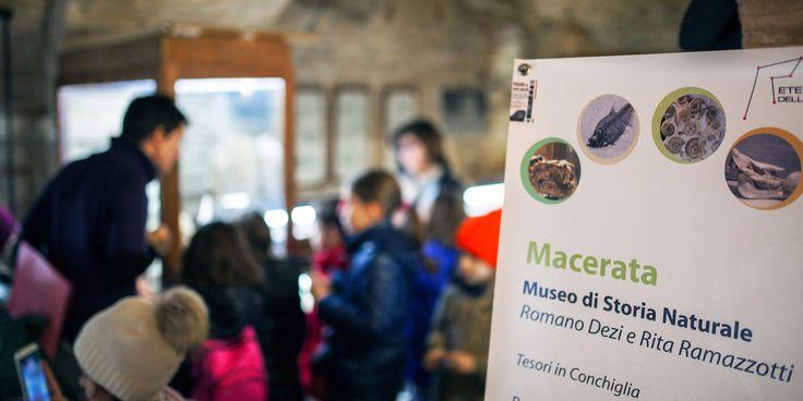 Gli operatori del CEA Parco di Fonescodella accompagnano una classe della scuola primaria Natali in visita al Museo Storia Naturale di  Macerata