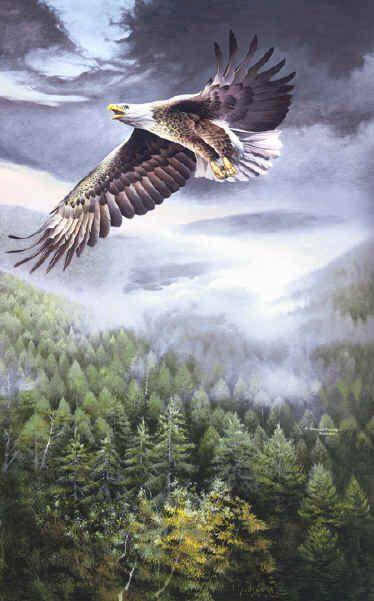 """Bound For Glory"" Wildlife art Spencer Williams"