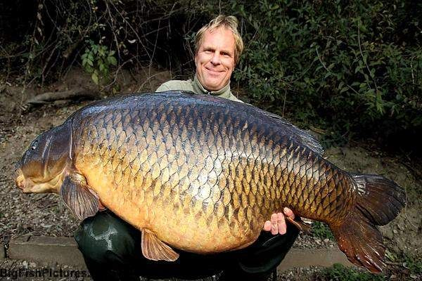 previous world record Common Carp