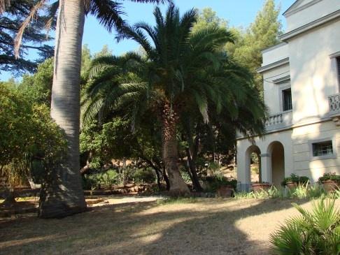 Le parc du Plantier à Hyères les Palmiers French Riviera     CC BY-SA Jigsaww