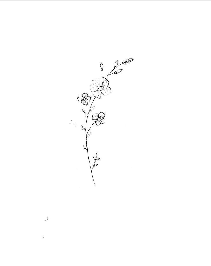 Wild flower 1 # tattoos