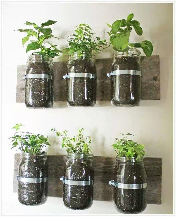 Gardeb idea's | Indoor Garden | Pinterest | Garden, Herb garden and Mason jar herb garden