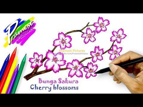 18 Gambar Bunga Melati Untuk Diwarnai Sakura Cara Menggambar Dan Mewarnai Gambar Bunga Untuk Download Halaman Mewarnai Bunga Bunga Sakura Menggambar Bunga