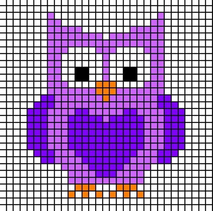 Owls, Fox, Racoon