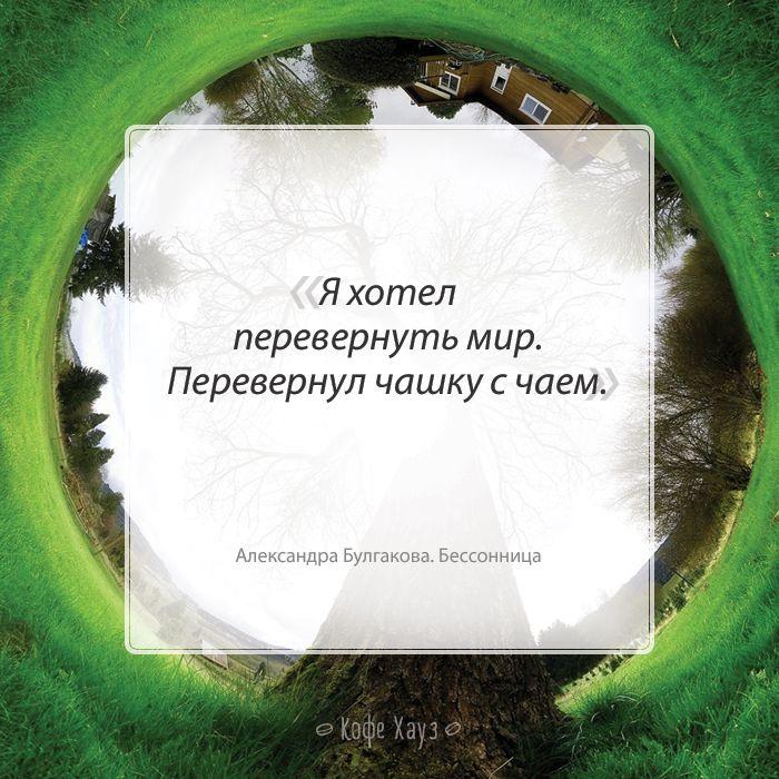 #чай #мир #цитаты