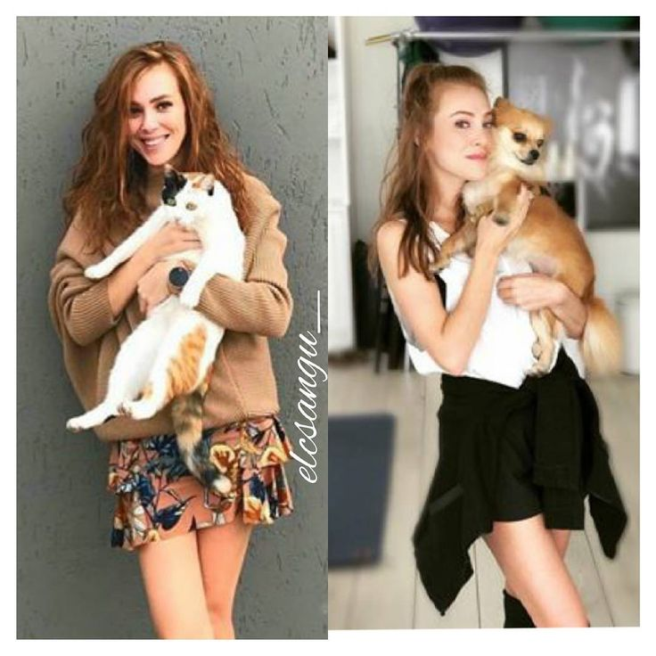"546 Likes, 5 Comments -  (@elcsangu_) on Instagram: ""Cat or Dog?  --- Wich one do you prefere? --- @elcinsangu """