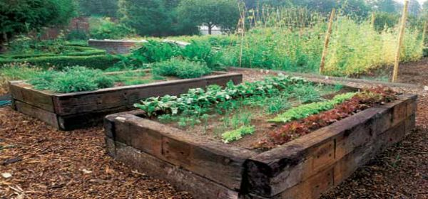 Railroad ties stacked to make rustic raised garden beds.