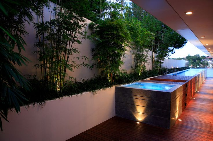 rendered wall and planter box for poolside