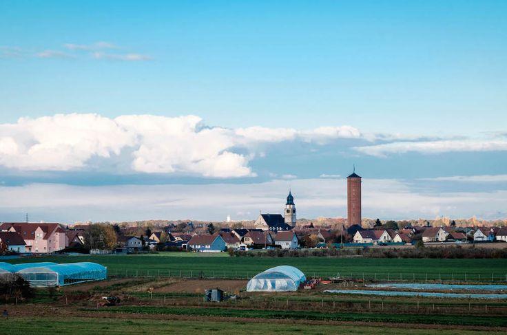 La commune alsacienne d'Ungersheim est montrée comme exemple de la transition écologique en France. Les réalisations et les projets, surprenants par leur nombre, leur envergure et leur audace, doivent beaucoup au maire du village mais ne séduisent pas la totalité de ses 2.000 habitants.  Ungersheim (Haut-Rhin), reportage  C'était le bassin de la potasse. Nord-Ouest de Mulhouse. La plaine d'Alsace s'étale aux pieds des Vosges. Ne dépassent à l'horizon que les clochers, les châteaux d'eau, ...