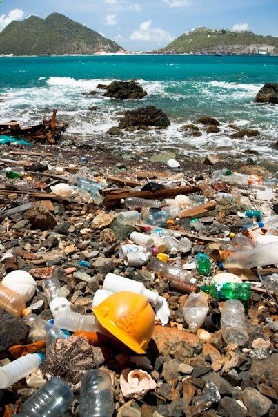 an overview of the issue of ocean pollution in the world World's oceans, how to prevent and control marine pollution, and how to treat the  polluted oceans key words: marine, marine pollution, marine pollution  11:  background and significance of the topic   231 event review.
