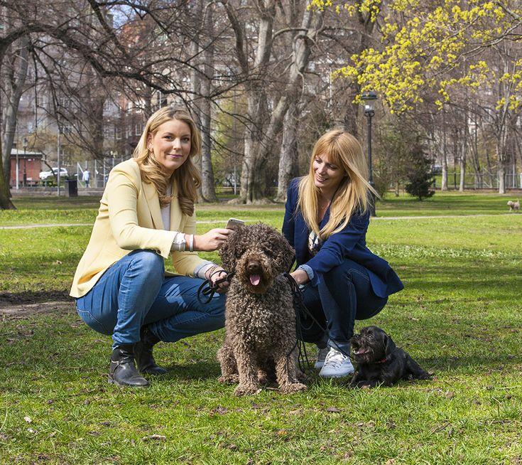 Katarina och Maja knöt ihop sina intressen hundar och företagande –i en ny app för hundägare.
