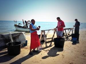 Vendita pesce in spiaggia Vasto