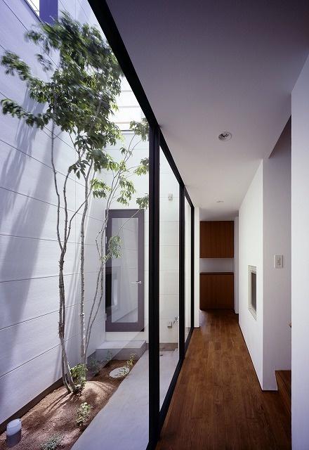Naoko Horibe, atrium. 中庭のあるスキップフロアの3階建て住宅/兵庫県姫路市