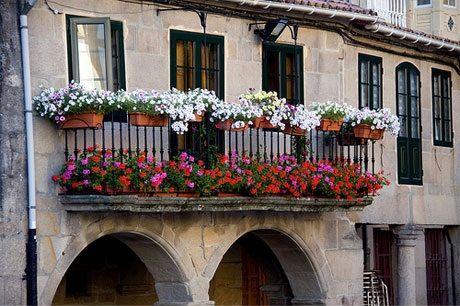plantas_balcon