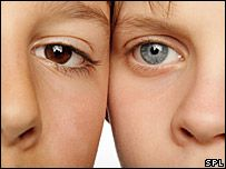 Genetics of eye colour unlocked  By Paul Rincon   Science reporter, BBC News      Eye colour has always intrigued geneticists  Scientists have made a breakthrough in their understanding of the genetics behind human eye colour.    They foun