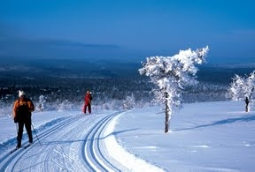 Cross-Country Skiing in Lapland  Winter Tours to Finland