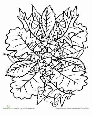 Free Printable Mandala Coloring Pages | ... Grade Mandalas Nature Worksheets: Oak Tree Coloring Page: Mandala